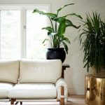 81 Popular Living Room Colors to Inspire Your Apartment Decoration-8011