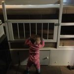 82 Amazing Models Bunk Beds With Guard Rail On Bottom Ensuring Your Bunk Bed Is Safe For Your Children 40