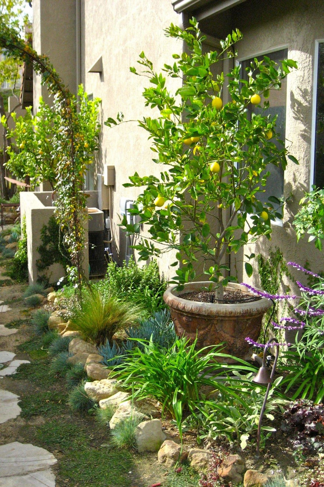 91 Small Backyard Landscape Decoration Models Are Simple And Look Creative 45
