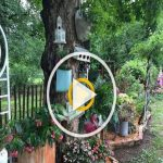 91 Small Backyard Landscape Decoration Models Are Simple And Look Creative 9