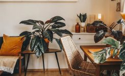 Breathtaking La Imagen Puede Contener Mesa E Interior On Boho Living Room Decor On A Budget Ideas Spaces Living Room Chairs