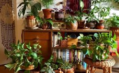 Engaging 30 Best Pinterest Home Decor Ideas that Beautify Your Home On Boho Living Room Inspiration Bohemian