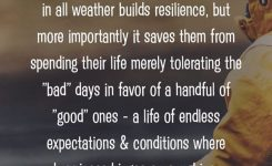 Pleasing Remember Love This On Homeless Shelter Living Conditions